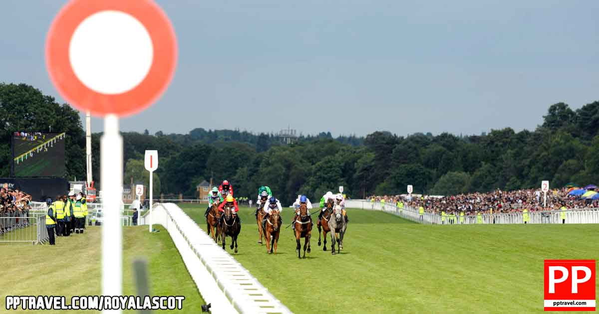 Royal Ascot - Putting the odds in your favour